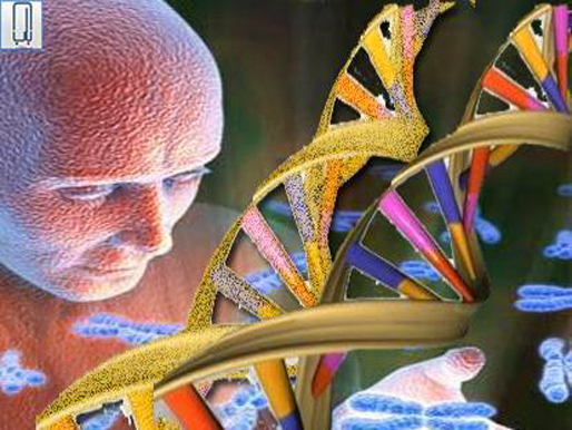 Genes and the genome revolution